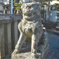 Photos: 歌舞伎役者のような表情の狛犬@高諸神社