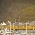 Photos: 早春の漁港前のR2沿いを走る@JR山陽本線