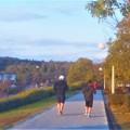 Photos: 日曜日の夕暮れのジョギングコース