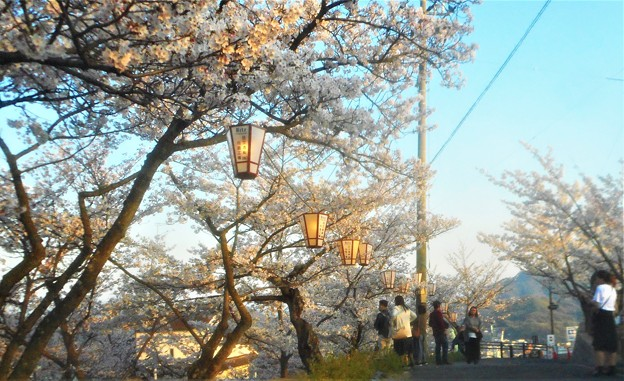 Photos: 灯が点るころ@千光寺山
