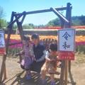 平成から令和へ@チューリップ祭2019@世羅高原農場