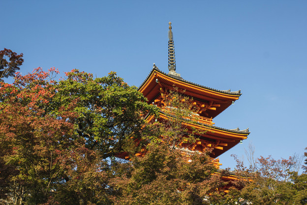京都 初秋 1