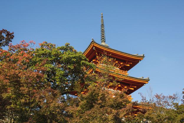 Photos: 京都 初秋 1