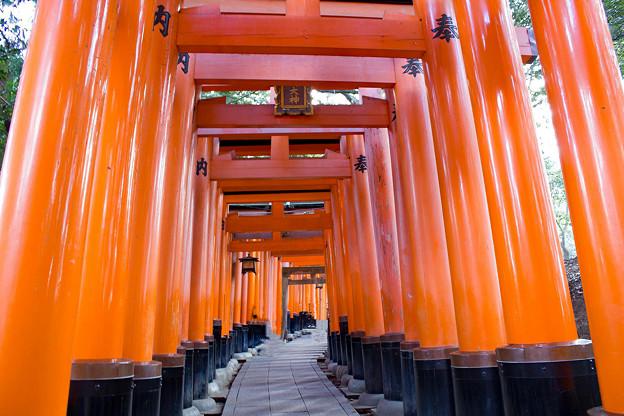 京都 初秋 3