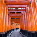 Photos: 京都 初秋 3