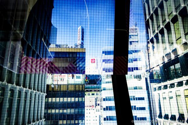 TOKYO COLOR CHROME #015