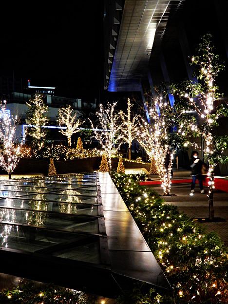 GOLD Christmas_003