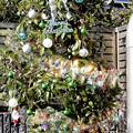 Photos: Merry Christmas_002