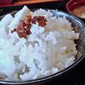 Photos: だいこん ( 練馬区旭町 or 成増 ) ご飯 ( 焼魚定食 )     2019/05/18