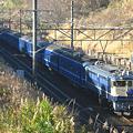 写真: ef65-1107-20081215