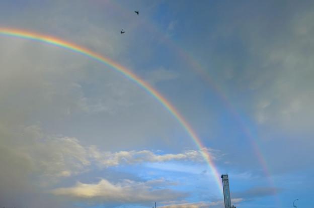 写真: 夜明けの二重虹2