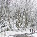 写真: 風雪前行