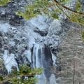 写真: 凍る滝 奥飛騨平湯大滝にて