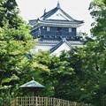 写真: 岡崎城