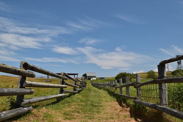 Photos: 空に近い牧場