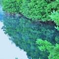 写真: ダム湖のリフレクション