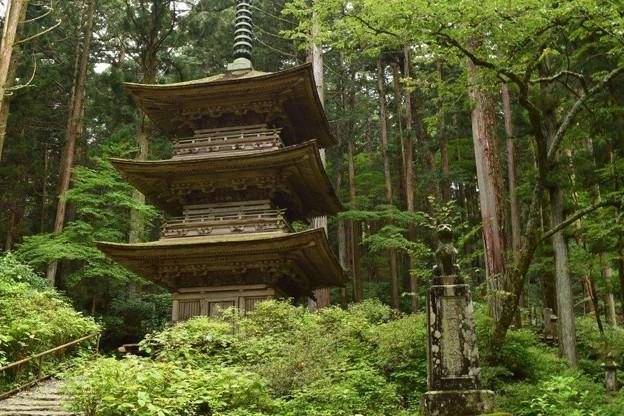 写真: 駒ヶ根光前寺の3重の塔