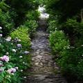 石畳の参道
