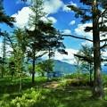 入笠山からの風景