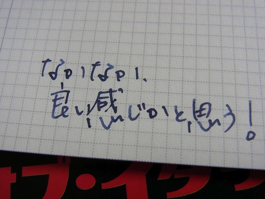 Adjusted a Penpoint of Pelikan M805 Stresemann (Fine Nib) handwriting on IDEA