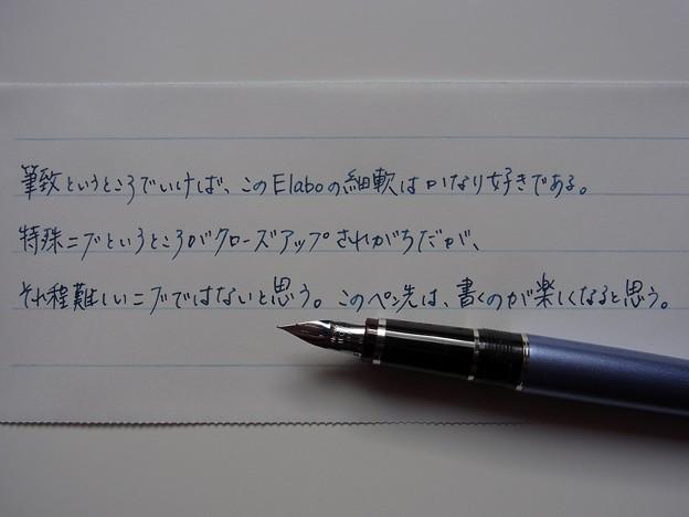 Pilot Metal - Elabo SF & Pilot iroshizuku tsuki-yo