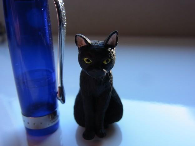 Cat Figure and KAWECO FP Cap