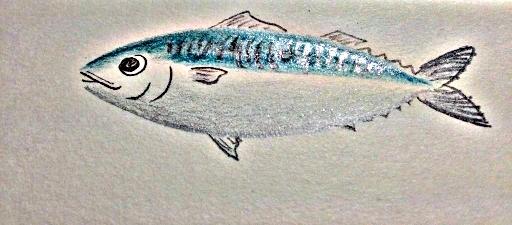 小日向 京さんが描かれた青魚イラストをPicasaでHDR風に加工。