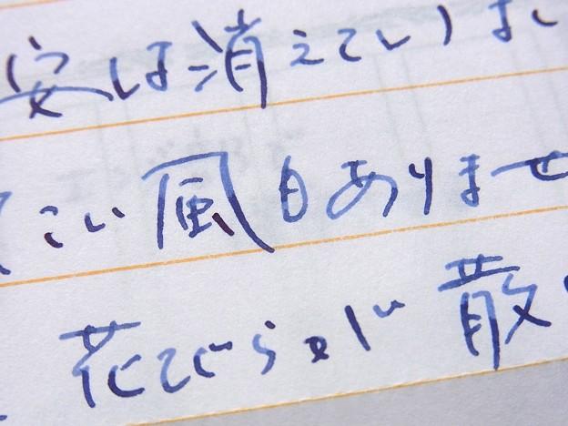 富士 #1