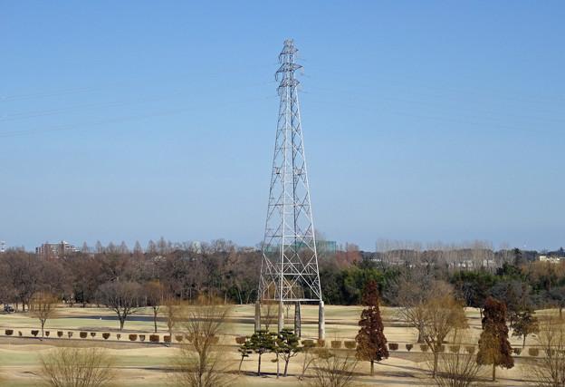 写真: 指扇線47号鉄塔