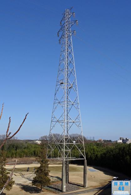 写真: 指扇線48号鉄塔