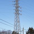 写真: 指扇線51号鉄塔