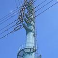 写真: 芳野台線13号鉄塔