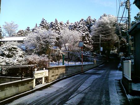 また雪が・・