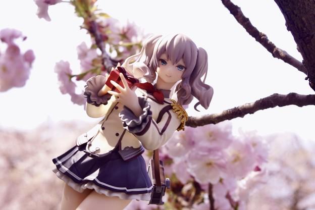 桜に錨_2