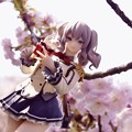 写真: 桜に錨_2