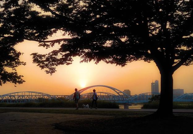 Photos: 黄砂の夕暮時