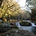菊池渓谷紅葉3