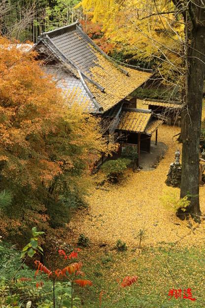 Photos: 康平寺3