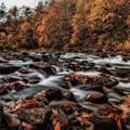 Photos: レッドの川
