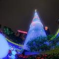 Photos: X'mas tree