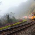 Photos: 霧の隠された列車