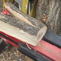 Photos: 薪割り機でスライス