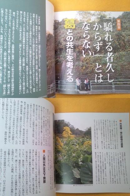 いばらき葛百科 常用藝文 植物 雑誌 くず クズ 雑草