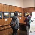 写真: 2016年2月15日(月)第9回『野草のささやき』写真展本日の来館者『21名』最終日