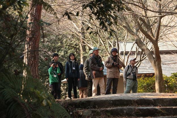 今日は探鳥会グループも森林公園です。