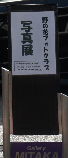 やっぱりみたか(MITAKA)った~?