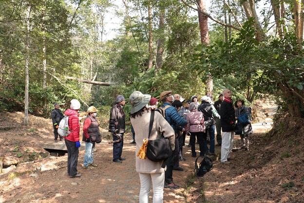 森林公園自然いきものかんさつ隊