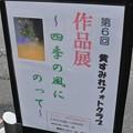 Photos: 豊橋写真展  第6回 黄すみれフォトクラブ