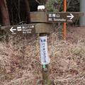 富幕山へ名鉄ハイキングツアー・・?