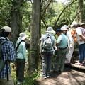 森林公園  自然いきものかんさつ隊